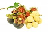 Longkong Rambutan And Mangosteen Sweet Fruit Isolated