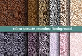 Animal Print, Zebra Texture Seamless Background