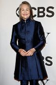 NEW YORK-JUNE 8: Actress Cherry Jones attends American Theatre Wing's 68th Annual Tony Awards at Rad