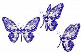 Blue White Paint Made Butterfly Set