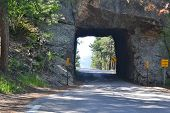 Black Hills Tunnel