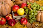 fruits and vegetables on autumn leaves background