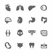 stock photo of internal organs  - Simple Set of Organs Related Vector Icons - JPG