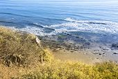 View of beach and reef in Santa Barbara, California from behind colorful foliage on a cliff.B
