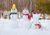 picture of snowman  - Snowmen - JPG