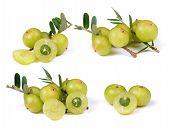 Gooseberries On White Background