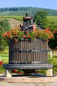 stock photo of wine-press  - wine  - JPG