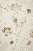 Mulberry paper with dry flower texture background