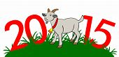 2015 Year Of The Goat In The Grass - Stock Illustration