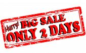 Big Sale Only Two Days