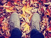 feet during fall when the leaves are turning colors toned with a retro vintage instagram filter effect