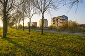 stock photo of highrises  - Highrise along a river at sunset in autumn - JPG