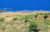 Volcanic Oceanfront Landscape