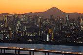 Tokyo city with Mountain Fuji
