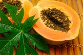 Fresh Papaya And Green Leaf