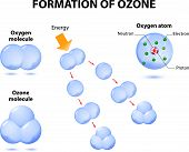 molecules ozone and oxygen