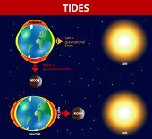 Tides depend where the sun and moon are relative to the Earth.