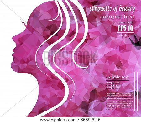 poster of Silhouette Of A Beautiful Girl In Pink