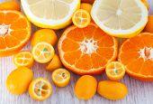 stock photo of kumquat  - Fresh tangerine kumquat and lemon on table - JPG
