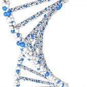 picture of double helix  - Close up Dna double helix molecules and chromosomes - JPG