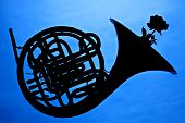 French Horn Silhouette On Blue