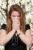 foto of hay fever  - Beautiful woman with a cold hay fever or allergies blowing her nose - JPG