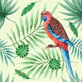 picture of parrots  - Watercolor pattern parrot and palm branches vector illustration - JPG