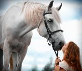 image of horse girl  - The red - JPG