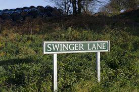 foto of swingers  - Roadsign for a road called Swinger Lane - JPG