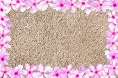 stock photo of dry grass  - Medicinal Nayantara or Catharanthus roseus flower frame with dry grass background - JPG