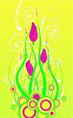 Spring Tulip'S Buds