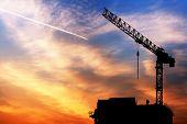 Crane And Sunrise