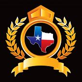 texas lonestar state on golden royal crest