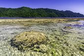 View From The Beach In Teluk Kiluan Coconut Island To The Surrounding Countryside With Mountains In  poster