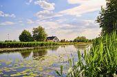 Typical rural dutch landscape in the Netherlands: