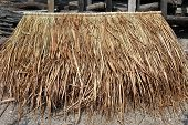 Pile Of Vetiver For Hut Roof. Panel Of Vetiver For Hut Roof, Straw Roof Hut Panel poster