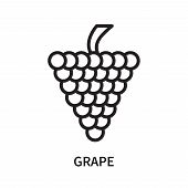Grape Icon Isolated On White Background. Grape Icon Simple Sign. Grape Icon Trendy And Modern Symbol poster