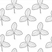 Black On White Strawberry Leaves. Vector Seamless Pattern. Endless Pattern For Wallpaper, Pattern Fi poster