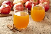 image of cider apples  - Fresh Organic Apple Cider with Apples and Cinnamon