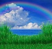 green grass field and sea sky white cloud rainbow