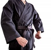 picture of black-belt  - Fighter in black kimono with black belt - JPG