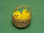 Chicks In Easter Basket