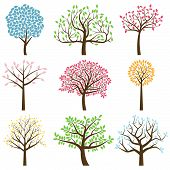 image of curvy  - Vector Collection of Stylized Tree Silhouettes with Leaves - JPG