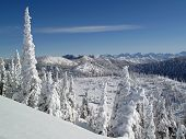 A Bluebird Ski Day