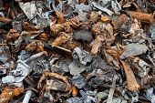 stock photo of ferrous metal  - Close up of metal pieces from shredded cars - JPG
