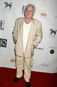Clement von Franckenstein at the Los Angeles Screening of 'Social Lights'. Regency Fairfax Cinemas,