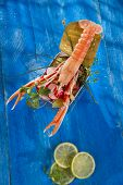 foto of crustaceans  - Presentation of a crustacean with mixed vegetables in box - JPG