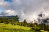 Majestic fog and clouds in the  Mountain valley landscape - green meadow and pines , Europe