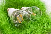 Two Led Bulb E27 With Different Chips In Large Transparent Glass Flasks On Artificial Grass