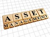 Asset Management In Golden Cubes